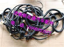 TH401ZG-3724280C柳汽霸龙507车架电线束总成/ TH401ZG-3724280C