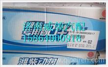 612600030017潍柴WD618发动机活塞/612600030017