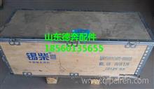 一汽锡柴4100曲轴/1005001CA01-0000B