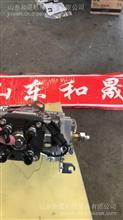 康明斯A2300农用设备专用燃油泵4900804【直列燃油泵】/4900804