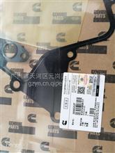 康明斯ISG机油冷却器芯罩垫3696552F/3696552F