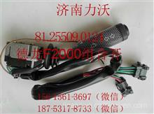 厂家优势供应陕汽德龙F2000/F3000组合开关81.25509.0124/24V/81.25509.0124/24V