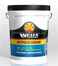 韦尔斯长效防冻液-25℃ 发动机冷却液/水箱宝9.kg绿色通用-25℃