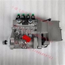 5336065 10403714123原装北京天纬发电机组高压柴燃油大泵/5336065 10403714123