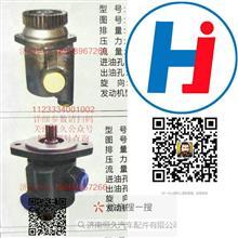 1123334001002原厂配套/合肥力威、合潍/转向泵、齿轮泵/1123334001002