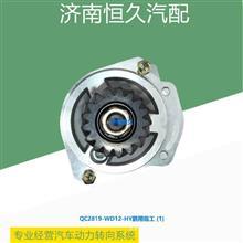 QC2819-WD12-HY临工齿轮泵/QC2819-WD12-HY