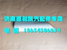 陕汽德龙X3000 倒车镜后盖 DZ14251770101/DZ14251770101