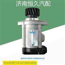 QC25/19-WD12   4120000124 临工齿轮泵/QC25/19-WD12   4120000124