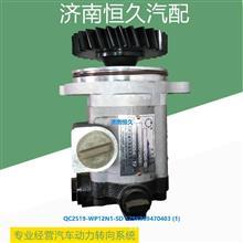 QC25/19-WP12N1-SD SZ9K869470403 转向齿轮/QC25/19-WP12N1-SD SZ9K86947040