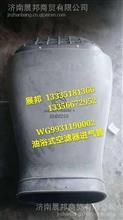 WG9931190002  重汽豪沃T7H 空滤器进气管/WG9931190002