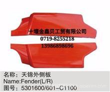 现货供应中国重汽东风轻卡驾驶室配件,覆盖件/B07