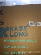 上汽红岩杰狮新金刚发动机原厂配件国5尿素泵 红岩杰狮国4尿素泵/1205-903121 1205-714221