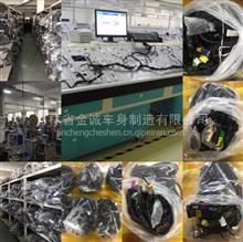一汽解放J6L J6P J6M 原厂车身线束底盘线束 灯泡电线厂专供 备品备件/3724010.3724045.