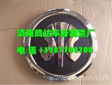 WG1684111012重汽新斯太尔D7B配件STEYR图案商标/WG1684111012