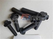 康明斯ISDE/ISBE对口连杆螺丝/福田康明斯ISF3.8发动机连杆螺丝/C4891179