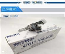 云内发动机原厂配件D19,D20,D25,D30,博士喷油器,油嘴/X191101 喷油器 (D19TCID1)