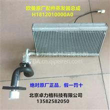 福田戴姆勒欧曼汽车配件原厂新款年度ETX蒸发器芯体形空调蒸发器/H1812010000A0