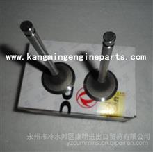 东风康明斯配件发动机6BT进气门3901117排气门/3901607