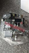 玉柴2108喷油泵总成/CA000-1111100A-DA70