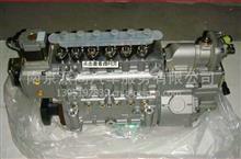 重汽豪沃WD615EGR四气门发动机喷油泵;燃油喷射泵总成 /VG1557080010