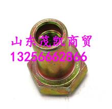 陕汽德龙M3000德龙X3000油箱背带专用插入式螺母/DZ91189550396
