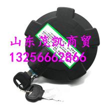 陕汽德龙M3000德龙X3000油箱盖/179200550023