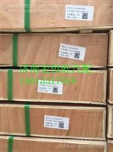 AZ1038010009重汽D10发动机正时齿轮室HW3814015P/AZ1038010009
