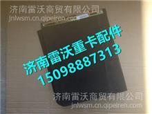 LG1613118070 重汽豪沃HOWO轻卡宽体面罩挡水板总成/LG1613118070
