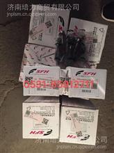红岩杰狮新金刚杰卡科索C13发动机上菲红13升发动机喷油器螺丝/FAT167078340