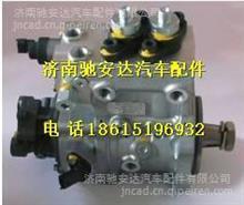 612630030024潍柴WP12共轨喷油泵/612630030024