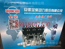 全柴QC4C2高压油泵/2409002110137