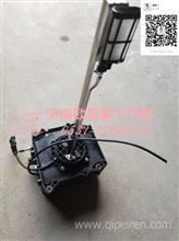 WG1034131181重汽豪沃 T7H 尿素泵总成 尿素箱集成系统/WG1034131181