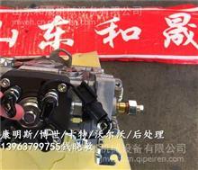 A2300(直列泵)燃油泵4900804/HRA130010DE1上海港口设备/4900804