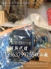 ISG燃油泵4327066-电磁阀修理包5406056EF北京福田/5406056EF