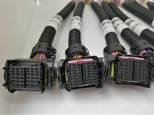维柴国六电脑板插头天榜汽车线束插头插座专卖 /维柴国六电脑板插头