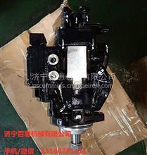 康明斯QSB4.5燃油泵3965405燃油泵5256607 4988593 4941066/康明斯燃油泵型号及价格查询