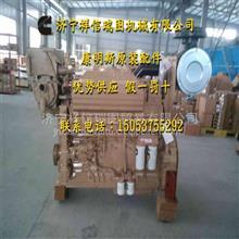 3626598空气滤芯总成KTA38-G2B喷油器调整/重庆康明斯空气滤芯总成3626598