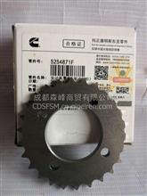 ISF2.8链条齿轮/5254871F
