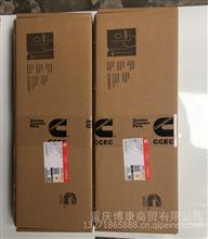 重庆康明斯原厂KTA19主轴瓦组/AR12270