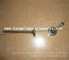 东风康明斯发动机配件发动机6CT气门/3942588