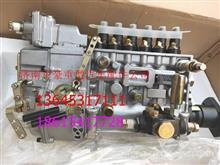 正宗原厂潍柴发动机高压油泵总成BHT6P120R 612601080138/612601080138