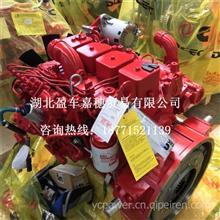东风康明斯 B140 33 车用柴油发动机总成/东康 B140 33