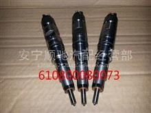 潍柴WP5电喷发动机喷油器总成/610800080073