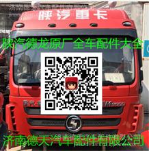 陕汽德龙天行健智雅版BD车载终端(3G)/DZ95189700101