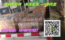 QSL9曲轴瓦3945917(主轴瓦3800270)康明斯大小瓦/QSL9曲轴瓦3945917