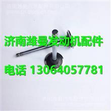 530-1007023A玉柴YC4110Q进排气门 /530-1007023A