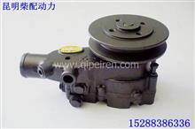 商机泵业玉柴动力发动机水泵总成/1MQ000-1307100
