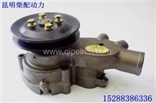 上海精泵玉柴动力发动机水泵总成/1AQ000-1307020D
