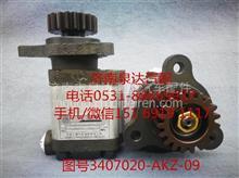 九平柴、6110锡柴转向油泵、齿轮泵3407020-AKZ-09/3407020-AKZ-09
