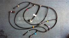 潍柴WP10传感器线束/612600080835